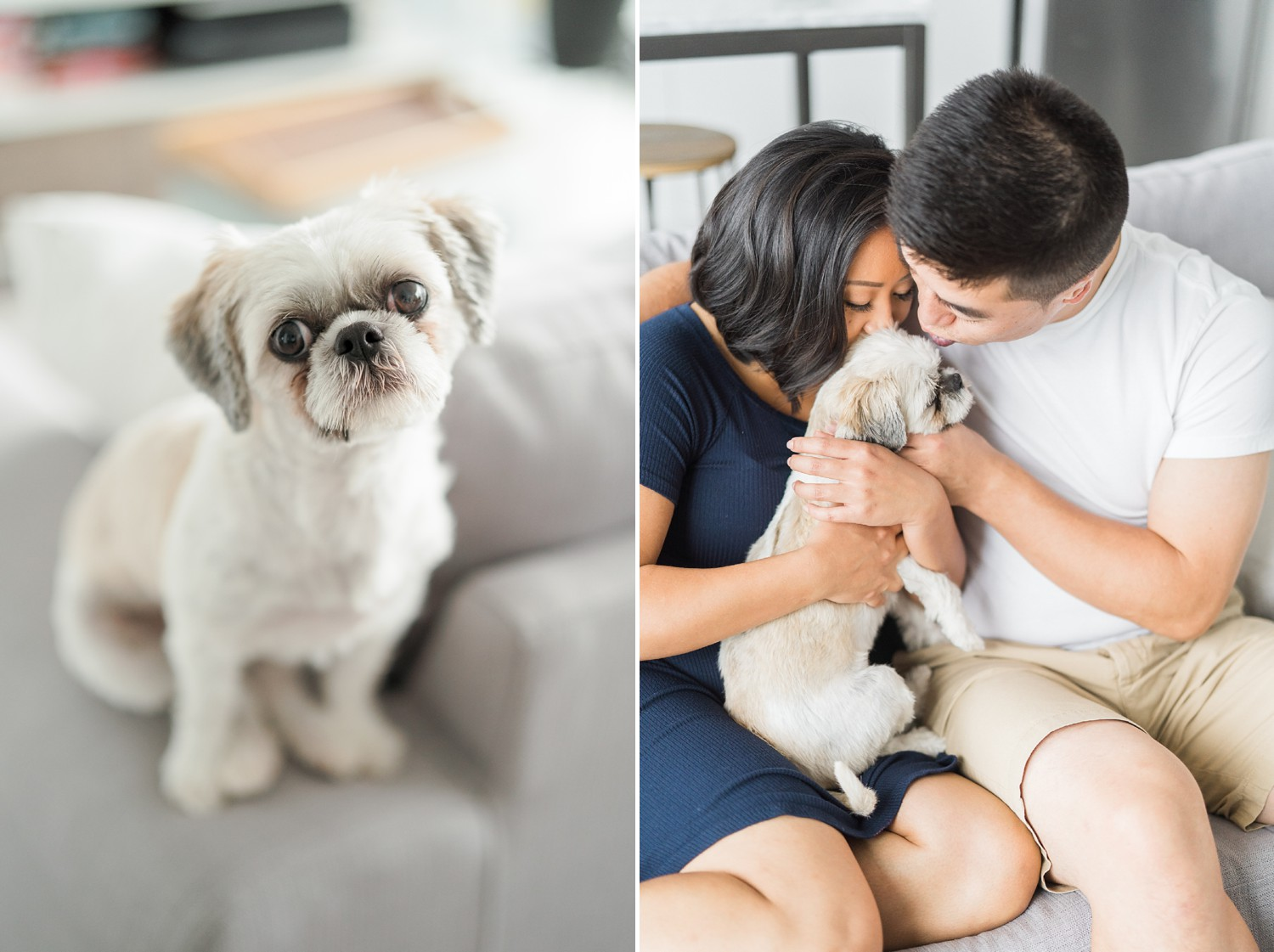 Home_Condo_Distillery_District_Engagement_Photos_dog_Puppy-Rhythm_Photography
