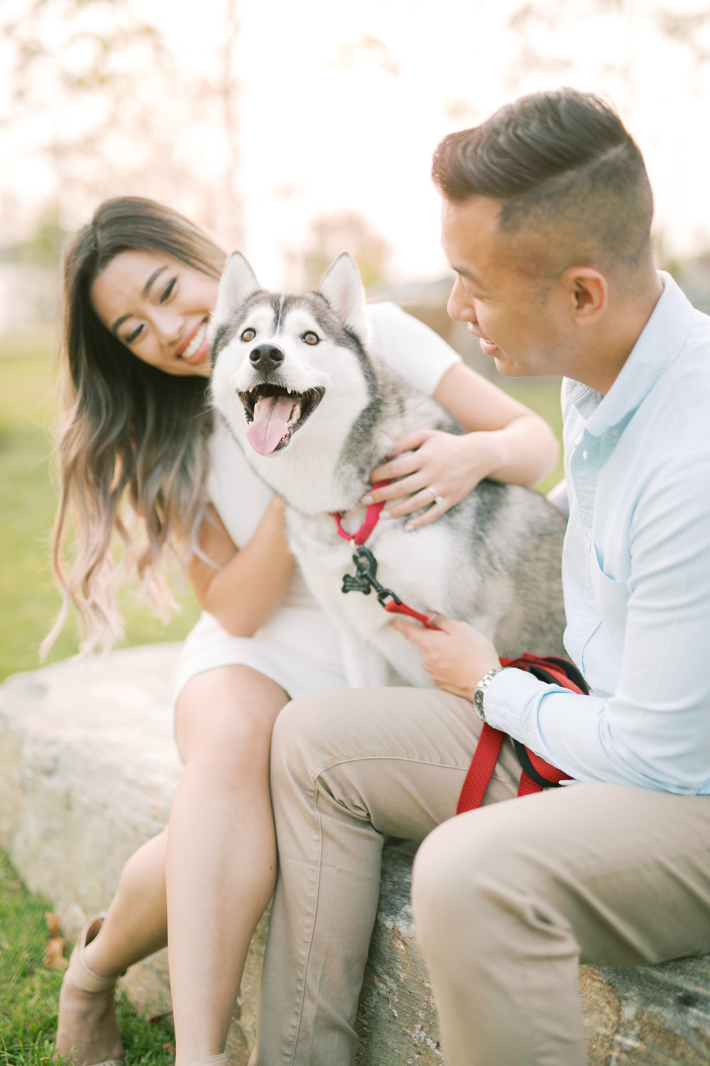 Trillium_Park_Husky_Toronto_Engagement_Photos