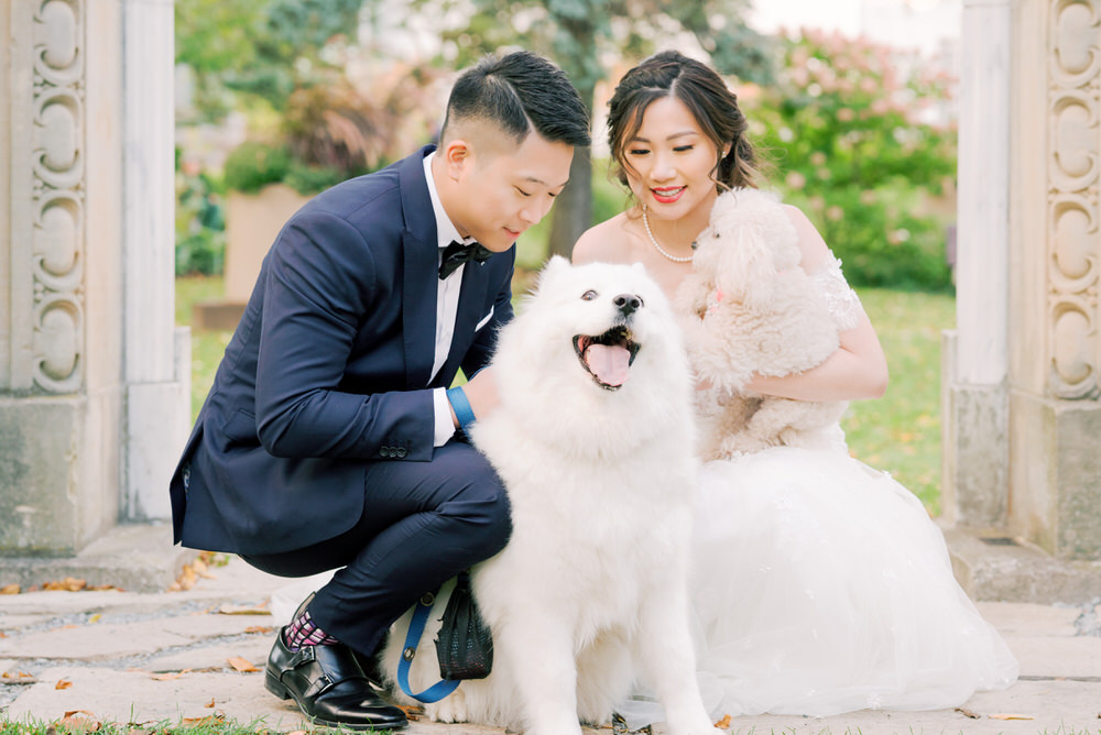Samoyed-Toronto_Guild_Inn_Wedding_Photos-Rhythm_Photography
