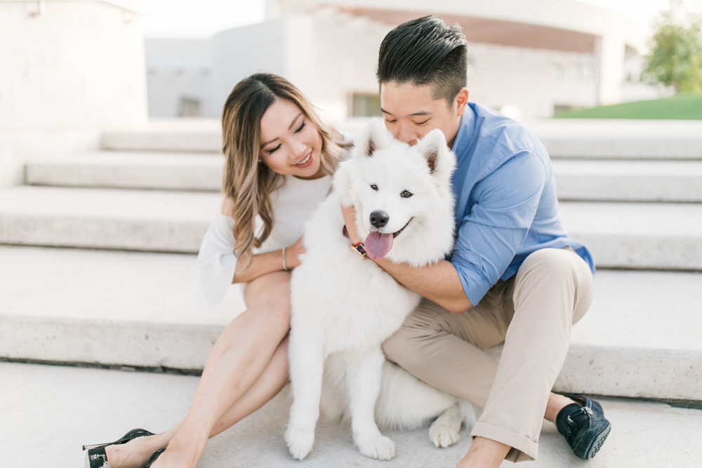 Samoyed_Puppy_Aga_Khan_Musuem_Engagement_Photos-Rhythm_Photography