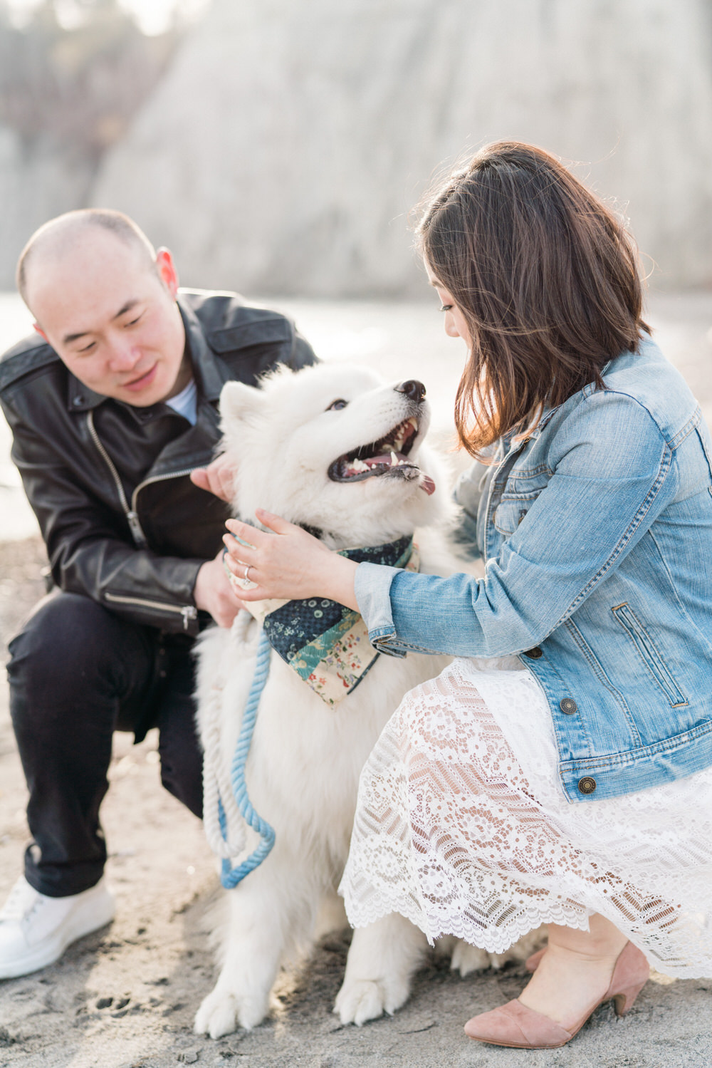 Samoyed_Puppy_Scarborough_Bluffs_Toronto_Engagement_Photos_with_Dog_Samoyed-Rhythm_Photography-006