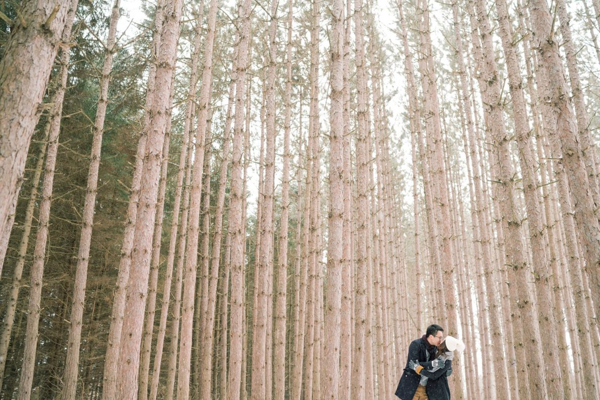 Tall_Trees_Kortright_Conservation_Forest_Winter_Toronto_Engagement_Photos-Rhythm_Photography