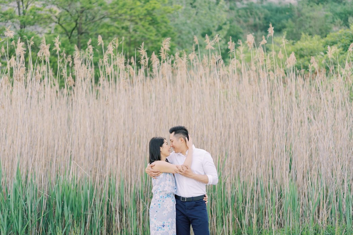 Tall Grass Toronto Scarborough Bluffs Beach Engagement Photos