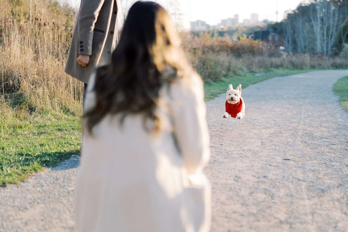 Evergreen Brickworks Countryside Engagement Photos with Puppy
